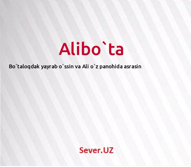 Alibo`ta