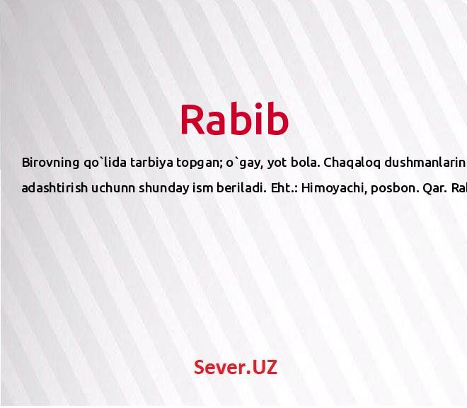 Rabib